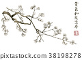 Branch of blossoming sakura . Japanese cherry tree 38198278