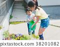 水生植物 花朵 花 38201082
