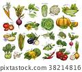Isolated set vegetables harvest for vegan market 38214816