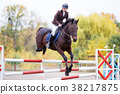 Young rider girl on bay horse jumping over barrier 38217875