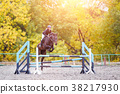 Young rider girl on bay horse jumping over barrier 38217930