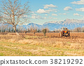Agricultural landscape with tractor plowing. 38219292