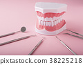 dental, dentistry, dentist 38225218