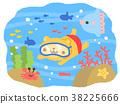 blue, water, marine 38225666