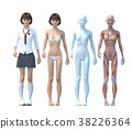 肌肉發達 肌肉 模特兒 38226364