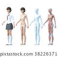 肌肉發達 肌肉 模特兒 38226371