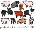 สัตว์,ภาพวาดมือ สัตว์,หมู 38226792