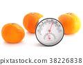 เครื่องวัดอุณหภูมิ,ส้มแมนดาริน,เครื่องวัดความชื้น 38226838