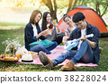 summer, holidays, vacation, music, happy people picnic concept - 38228024