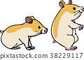 倉鼠外形傳染媒介例證 38229117