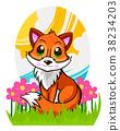 fox, animal, flowers 38234203