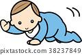 baby, infant, crawl 38237849