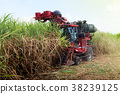 Sugarcane harvester machine 38239125