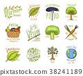 organic, vector, logo 38241189