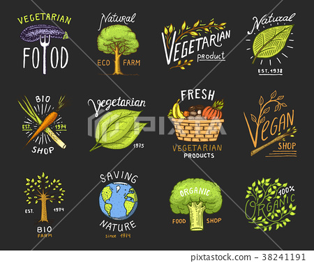 Healthy Organic food logos set or labels and 38241191