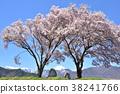 아즈미노 벚꽃 항상 만약 도조와 常念岳 38241766