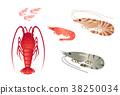 对虾 斑节虾 虾 38250034