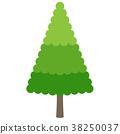 矢量 树 树木 38250037