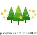 나무와 화분 38250039