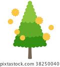 花粉 过敏原 杉木花粉 38250040