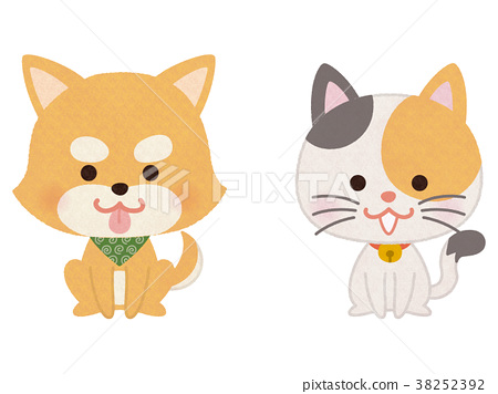 착석하는 애완견과 고양이 38252392
