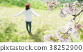 봄 벚꽃 38252900