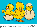 cartoon little chickens hatching from eggs 38255922