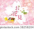 賞櫻 賞花 觀賞櫻花 38258204