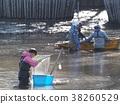 inokashira, inokashira park, pond 38260529
