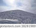 藏王樹冰 38261989
