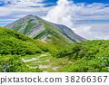 여름 蓮華岳과 구름 38266367