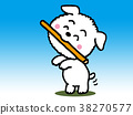 สุนัข,สุนัช,ลูกหมา 38270577