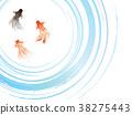 金魚 漣漪 波紋 38275443
