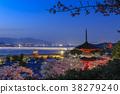 벚꽃 피는 미야지마 다보탑에서 바라 보는 야경 38279240
