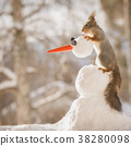 red squirrel holding an snowman head 38280098
