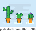 illustration of cactus flat design vector 38280286