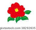 คาเมลเลีย,ดอกไม้,ไม้ 38292635