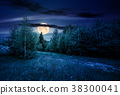 path through forested grassy meadow at night 38300041