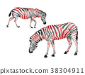 Zebra striped  black and white with red roses.   38304911