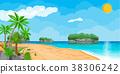 vector, beach, ocean 38306242