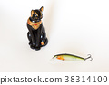 Fishing wobblers and lure on a white background 38314100