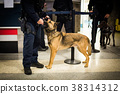 Police dog with officer 38314312