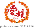 ehime, maple, yellow leafe 38314714