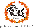 ehime, maple, yellow leafe 38314715