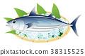 bonito, (fish), fish 38315525