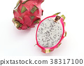 火龍果 水果 熱帶水果 38317100
