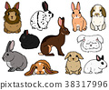 矢量 插图 动物 38317996
