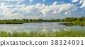 Summer landscape of park on the shore of a pond 38324091
