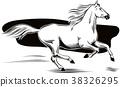 horse animal run 38326295