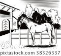 馬兒 動物 牧場 38326337